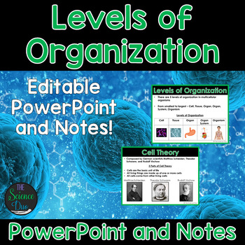 Levels of Organization - PowerPoint and Notes