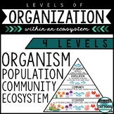 Levels of Organization in an Ecosystem