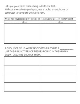 Levels of Organization Research Worksheet Packet