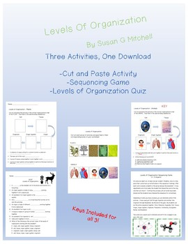 Levels of Organization-Individual Sorting Cards, Group Activity and Quiz