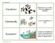 Levels of Organization Vocabulary Lesson Pack