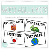 Biology Word Wall Cards - Levels of Organization