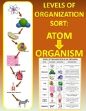 Levels of Organization in Living Things SORT: Atom to Organism