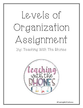 Levels of Organizations Assignment