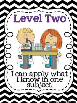 Levels of Understanding & Application Posters {Formative Assessment}