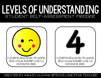 Levels of Understanding Student Self-Assessment FREEBIE