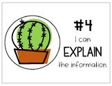 Levels of Understanding Cactus Posters