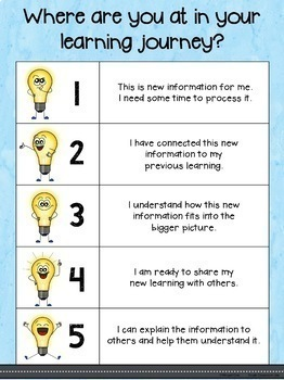 Levels of Understanding Self Assessment