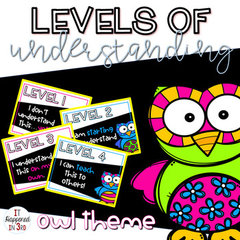 Owl Themed Levels of Understanding Posters and Rubrics