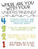 Levels of Understanding Poster