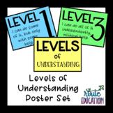 Levels of Understanding Poster Set