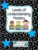 Levels of Understanding Posters