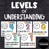 Levels of Understanding - Posters & Exit Tickets