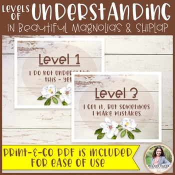 Levels of Understanding Posters Plus FREE Bookmarks {Magnolia Decor}