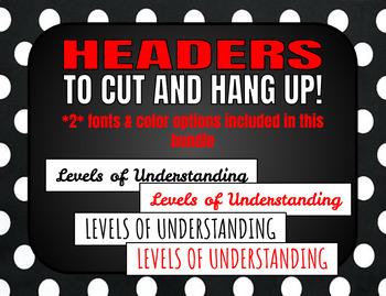 Levels of Understanding Posters (Polka Dot) *w/ Rubrics*