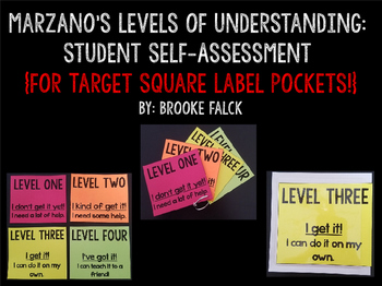 Levels of Understanding Student Self-Assessment (for Target Square Pockets!)