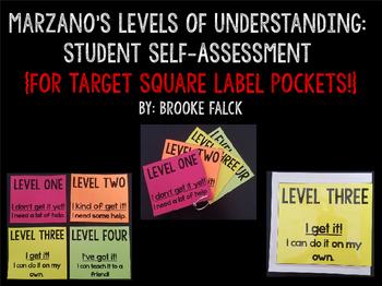 Levels of Understanding Student Self-Assessment (for Targe