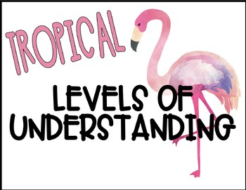 Levels of Understanding - Tropical