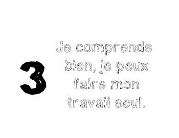 Levels of Understanding in French - Niveaux de comprehension