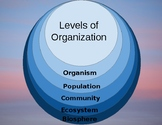 Levels of organization (ecology) digital virtual flip foldable