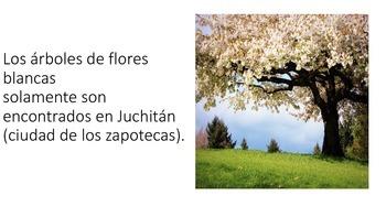 Leyenda mexicana Los árboles de flores blancas