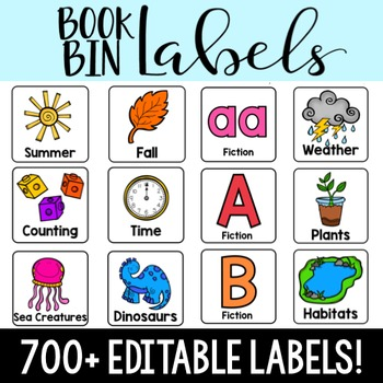 Library Book Bin Labels (Editable!)