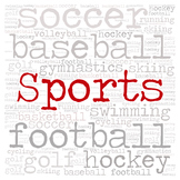 Library Genre Sign:  SPORTS