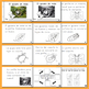 Libritos de insectos NO-FICCIÓN el gusano de seda