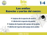Spiders in Spanish | Especies y Partes de la araña {Librito y tarjetas}