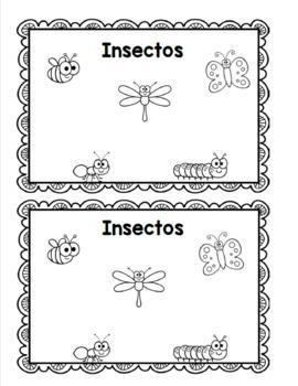 Libros de los insectos / Spanish Insect Emergent Readers