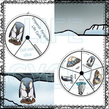 "Penguin ""Life Cycle"" (Peekaboo Spinner Wheel)"