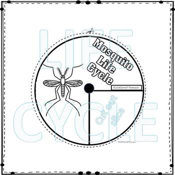 Mosquito (Life Cycle Spinner)