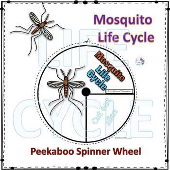 Mosquito Life Cycle (Peekaboo Spinner Wheel)