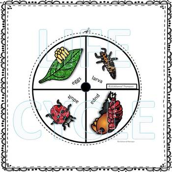 """Ladybug """"Life Cycle"""" (Peekaboo Spinner Wheel)"""