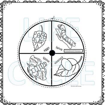 """Silkworm """"Life Cycle"""" (Peekaboo Spinner Wheel)"""