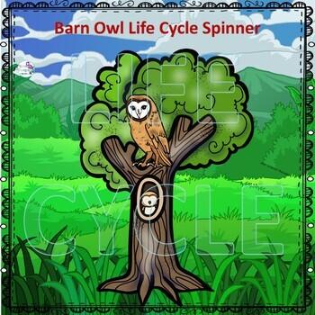"""Barn Owl """"Life Cycle"""" (Peekaboo Spinner Wheel)"""