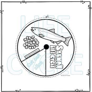 "Salmon ""Life Cycle"" (Peekaboo Spinner Wheel)"