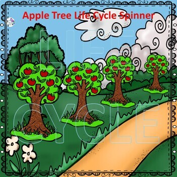 Apple Life Cycle (Peekaboo Spinner Wheel)