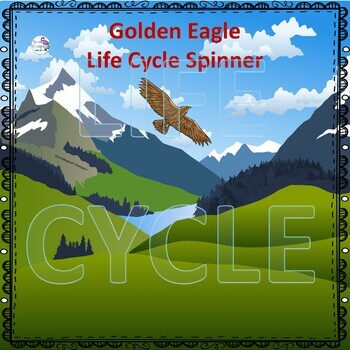 Golden Eagle Life Cycle (Peekaboo Spinner Wheel)