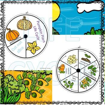 """Pumpkin """"Life Cycle"""" (Peekaboo Spinner Wheel)"""