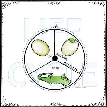 Iguana (Life Cycle Spinner)