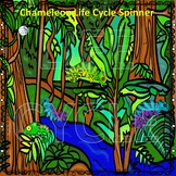 Chameleon (Life Cycle Spinner)