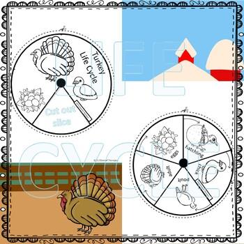 """Turkey """"Life Cycle"""" (Peekaboo Spinner Wheel)"""