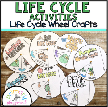 Life Cycle Activities A Growing Bundle