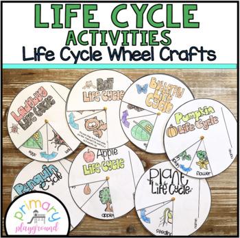 Life Cycle Activities Life Cycle Wheel Craft