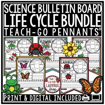 Life Cycle Activity BUNDLE • Teach-Go Pennants