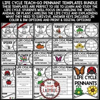 Life Cycle Activity BUNDLE • Teach- Go Pennants™
