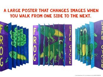 Life Cycle 3-way Agamographs Collaboration Posters BUNDLE (6 Posters)