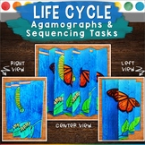 Life Cycle Agamographs and Sequencing Activities