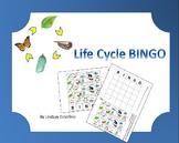 Life Cycle BINGO: Frog and Butterfly